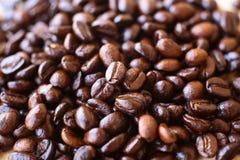 кофе фасоли близкий снятый вверх Стоковые Фото
