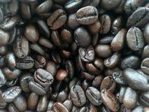 кофе фасоли близкий снятый вверх Стоковое Изображение RF