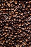 кофе 2 фасолей Стоковое фото RF