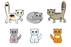 Кошки Стоковая Фотография RF