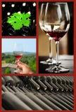 Коллаж вина. Стоковое Изображение RF