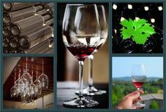 Коллаж вина. Стоковое Фото