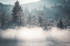 Коллаж зимы Стоковое фото RF