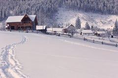 Коллаж зимы Стоковые Изображения