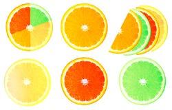 Коллаж кусков лимона, апельсина, грейпфрута Стоковые Изображения RF