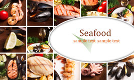 Коллаж морепродуктов Стоковая Фотография RF