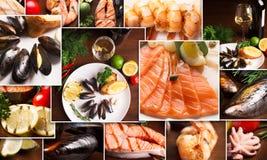Коллаж морепродуктов Стоковое Фото