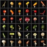 Коллаж овощей стоковая фотография rf