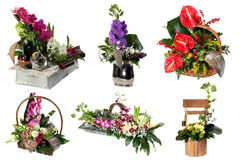 Коллаж различных красочных цветочных композиций стоковая фотография rf