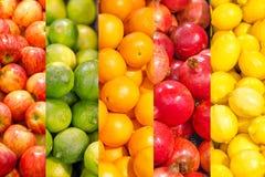 Коллаж различных плодоовощей Стоковые Изображения RF