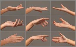 Коллаж рук женщины Стоковая Фотография RF