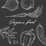 Коллаж свежих овощей Стоковые Изображения RF
