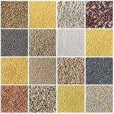 Коллаж состоя из разного вида хлопьев и семян Стоковые Фотографии RF