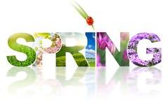 Коллаж слова весны Стоковое Изображение RF