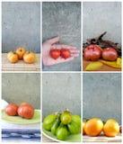 Коллаж томата Стоковое Изображение RF