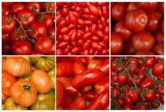 Коллаж томатов Стоковое Изображение