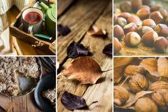 Коллаж фото, осень, падение, сухой коричневый красный цвет выходит, фундуки грецких орехов, торт яблока, кружка с красным чаем пл Стоковое Изображение