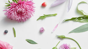Коллаж фото для флористического дизайна Стоковая Фотография RF