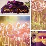 Коллаж цветка Lavander Стоковое фото RF