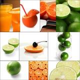 Коллаж цитрусовых фруктов Стоковое фото RF