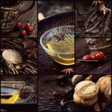 Коллаж чая зимы стоковое изображение rf
