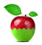 Коллаж Яблока Стоковая Фотография RF
