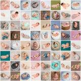 Коллаж newborn фото младенцев стоковая фотография rf