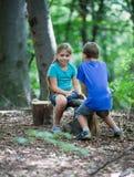 Колебани-шатайтесь в древесине Стоковое фото RF
