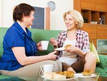Коллеги женщин выпивая coffe и беседуя во время перерыва на чашку кофе Стоковые Изображения RF