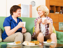 Коллеги женщин выпивая coffe и беседуя во время перерыва для lu Стоковые Изображения RF