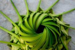 Колени шляпы Солнця из листьев ладони Стоковое Изображение RF