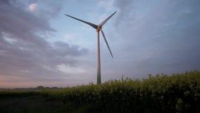 Колеса ветра на восходе солнца и тумане сток-видео