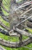 Колеса велосипеда в ряд Стоковые Изображения RF