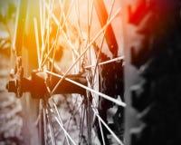 колесо автошины цепного колеса части горы bike цепное Стоковые Фото