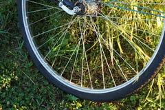 Колесо велосипеда на траве Стоковое Фото