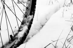 Колесо велосипеда Стоковые Фотографии RF