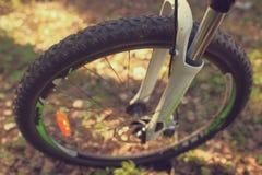 Колесо протектора конца-вверх велосипеда в лесе весной Стоковые Фото