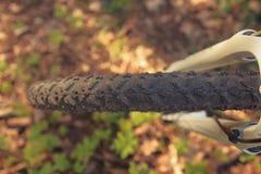 Колесо протектора крупного плана велосипеда в лесе весной Стоковое Изображение