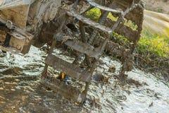 Колесо трактора Стоковое Изображение