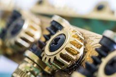 Колесо шестерни Pegbox Стоковое Фото