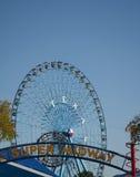 Колесо Ferris положения Техаса справедливое стоковое изображение rf