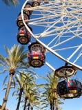 Колесо Ferris с пальмами Стоковое Изображение
