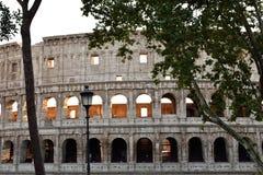 Колизей стоковое изображение rf