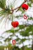 колокол удачливейший Стоковая Фотография RF