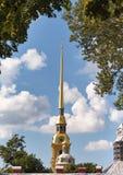 Колокольня собора Питера и Пола Стоковое фото RF