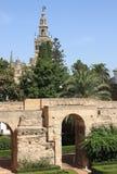 Колокольня Giralda от реальных садов Alcazar Стоковая Фотография