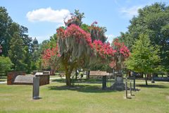Колониальное кладбище парка стоковое фото