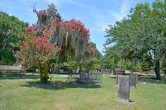 Колониальное кладбище парка стоковые изображения rf