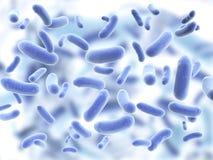 Колония патогенических вирусов Стоковое Изображение RF