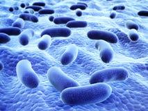 Колония патогенических вирусов Стоковая Фотография